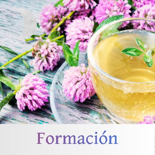 formacion_nutricion